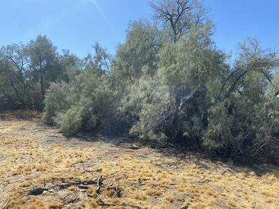 0 E PLOMOSA ROAD, Bouse, AZ 85325 - Photo 2