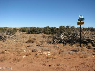 5903 COW BELL ROAD # 59, Heber, AZ 85928 - Photo 2