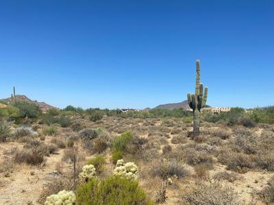 8448 E HOMESTEAD CIR, Scottsdale, AZ 85266 - Photo 2