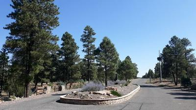 3939 SUNSET RIDGE LOOP # 172, Happy Jack, AZ 86024 - Photo 2