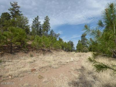 885 E FOREST SERVICE RD 512 # B, Young, AZ 85554 - Photo 1
