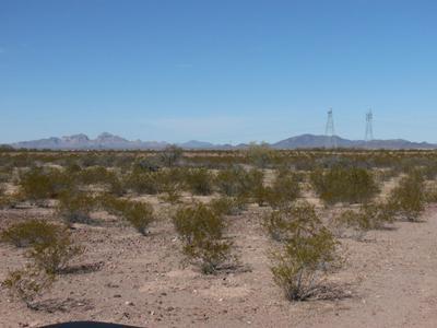 16800 S 395TH AVENUE, Tonopah, AZ 85354 - Photo 1