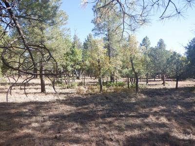 2620 ROUNDUP LN # 290, Happy Jack, AZ 86024 - Photo 2