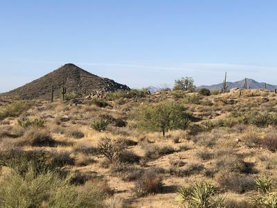 29709 N 109TH PL # 131, Scottsdale, AZ 85262 - Photo 2