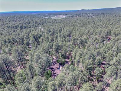 2506 BUTTERFLY LN, Pinetop, AZ 85935 - Photo 2