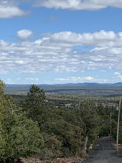 003X E WILSON ROAD, Linden, AZ 85901 - Photo 2