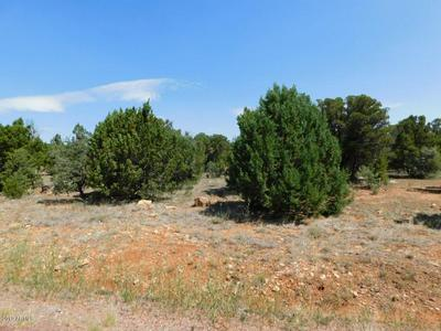 1516 LOW MOUNTAIN TRL # 163, Heber, AZ 85928 - Photo 1