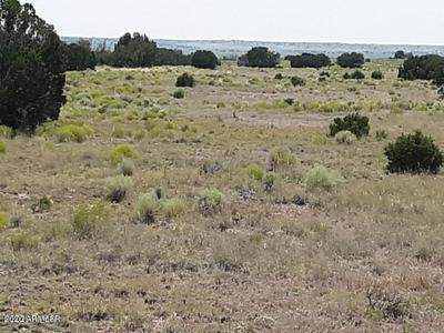 BIG SIX RANCHES LOT 10 UNIT 2, Concho, AZ 85924 - Photo 1