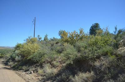 193 S RUGER RANCH ROAD, Kirkland, AZ 86332 - Photo 2