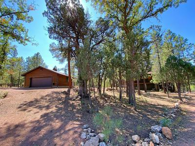 2908 APACHE DR, Happy Jack, AZ 86024 - Photo 2