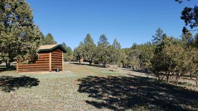 7390 W FOREST SERV LANE, Young, AZ 85554 - Photo 1