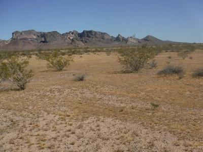 XXX W XXX - LOT 73 -- # 73, Tonopah, AZ 85354 - Photo 2