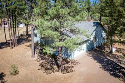 2923 BUCKSKIN CANYON RD, Heber, AZ 85928 - Photo 2