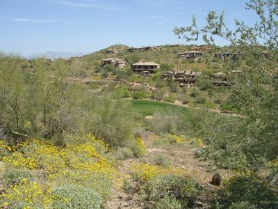 9815 N PALISADES BLVD # 17, Fountain Hills, AZ 85268 - Photo 1