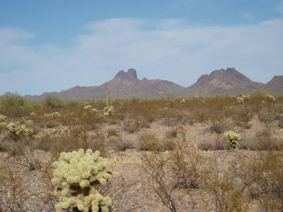 33601 W VILLA CASSANDRA WAY # 214, Unincorporated County, AZ 85390 - Photo 2