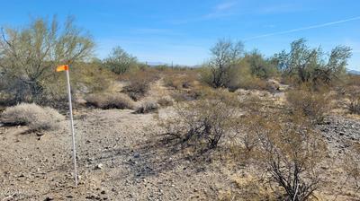 22702 W SPRUCE ST # 117, Buckeye, AZ 85396 - Photo 2