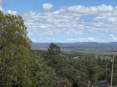 003X E WILSON ROAD, Linden, AZ 85901 - Photo 1