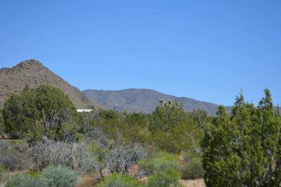 2620 GOLD MINE ROAD, Yucca, AZ 86438 - Photo 2