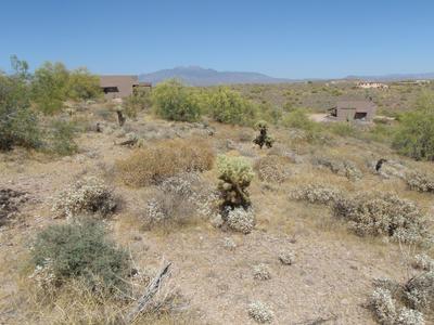 14403 N VISTA DEL ORO, Fort McDowell, AZ 85264 - Photo 2