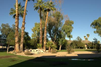 19601 N 7TH ST UNIT 1065, Phoenix, AZ 85024 - Photo 1