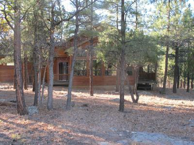 2500 WOODY PINE DR, Happy Jack, AZ 86024 - Photo 2