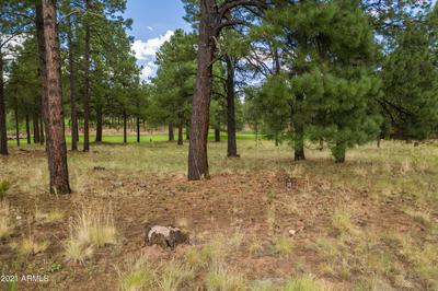 1976 E BARE OAK LOOP # 235, Flagstaff, AZ 86005 - Photo 2
