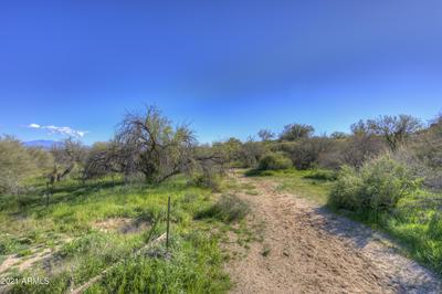 14003 E DOVE VALLEY ROAD, Scottsdale, AZ 85262 - Photo 2