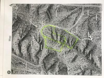 XXX THIRSTY EARTH DR., FORT MCDOWELL, AZ 85264 - Photo 2