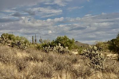 00000 N GOLDFIELD ROAD # 9, Fort McDowell, AZ 85264 - Photo 2