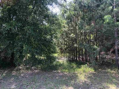 20021 HEATHROW DR, Silverhill, AL 36576 - Photo 2