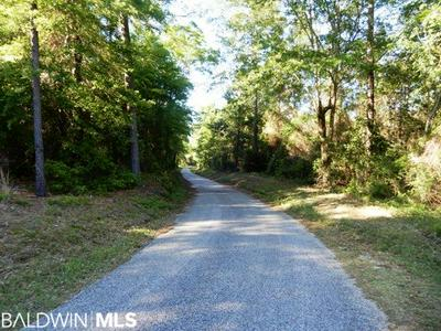23000 BLOCK MCCOY ROAD, Perdido, AL 36562 - Photo 2