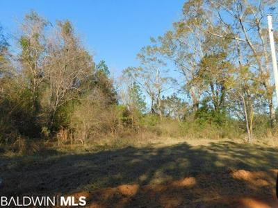 W STATE LINE ROAD, Century, FL 32535 - Photo 2