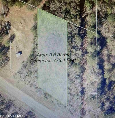 12240 MASON FERRY RD, Wilmer, AL 36587 - Photo 1
