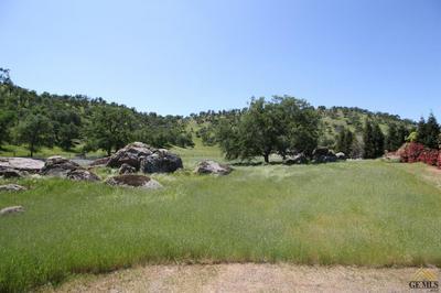 16219 ROBERTS DR, Springville, CA 93265 - Photo 2