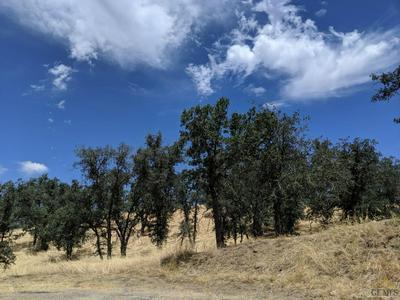 0 ARMED CT, Tehachapi, CA 93561 - Photo 2