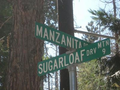 0 MANZANITA, Posey, CA 93260 - Photo 1