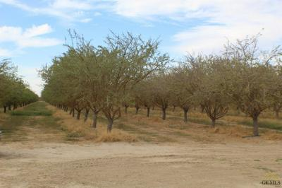0 POND RD., Wasco, CA 93280 - Photo 2