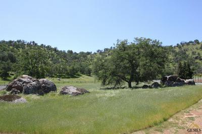 16219 ROBERTS DR, Springville, CA 93265 - Photo 1