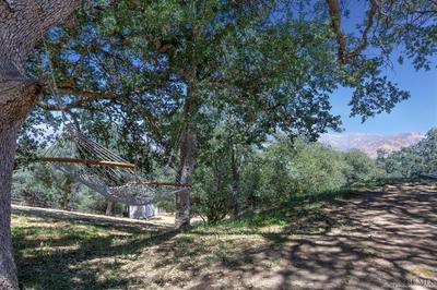 28122 TWISTED OAK RD, KEENE, CA 93531 - Photo 2