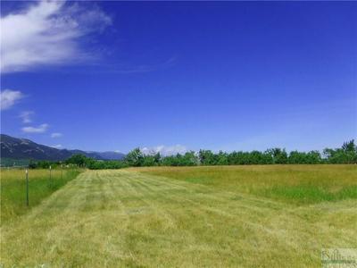NSN CREEK HILL LANE, Red Lodge, MT 59068 - Photo 1