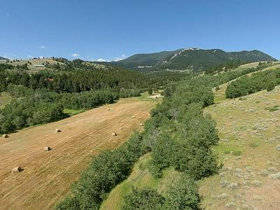 TRACT 33 REMINGTON RANCH, Red Lodge, MT 59068 - Photo 2