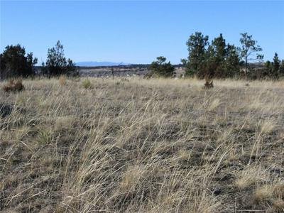 1 WINCHESTER DR, ROUNDUP, MT 59072 - Photo 2