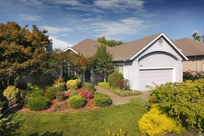1073 ELSBREE LN, Windsor, CA 95492 - Photo 1