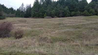 3775 SECOND GATE RD, Willits, CA 95490 - Photo 2
