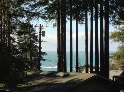 46841 OCEAN VIEW WAY, Gualala, CA 95445 - Photo 2