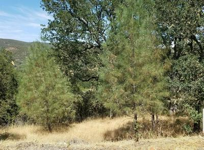 0 HARNESS DRIVE, Pope Valley, CA 94567 - Photo 2