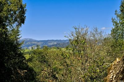 0 HILLTOP ROAD, Healdsburg, CA 95448 - Photo 1