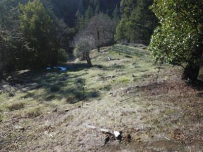 8850 SIMMERLY RANCH ROAD, LAYTONVILLE, CA 95454 - Photo 2