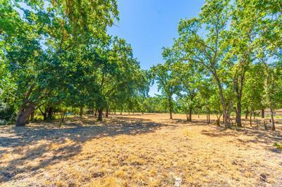 1353 BELLA OAKS LN, Rutherford, CA 94558 - Photo 2