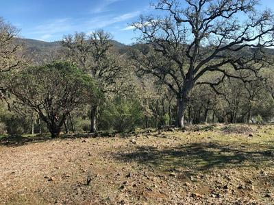 0 0 HARNESS DRIVE, Pope Valley, CA 94567 - Photo 1